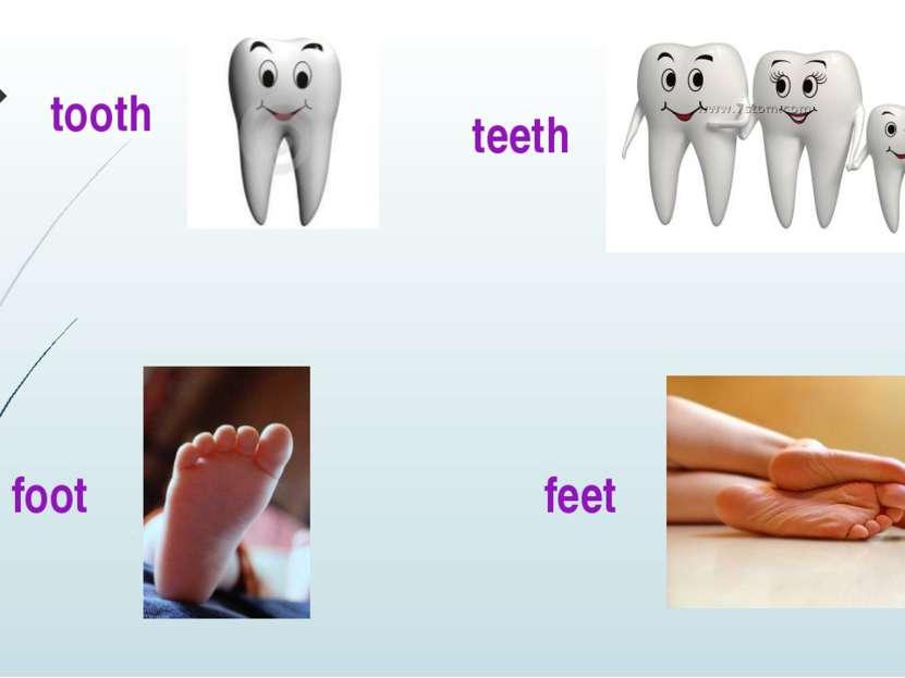 tooth teeth foot feet