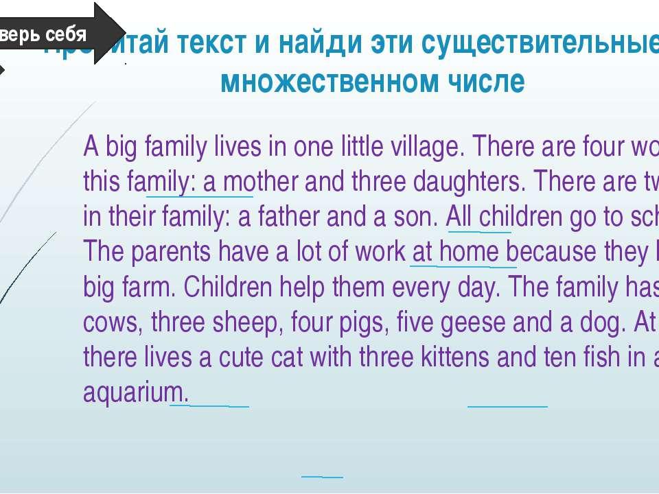 Прочитай текст и найди эти существительные во множественном числе A big famil...