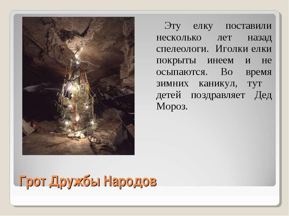Грот Дружбы Народов Эту елку поставили несколько лет назад спелеологи. Иголки...