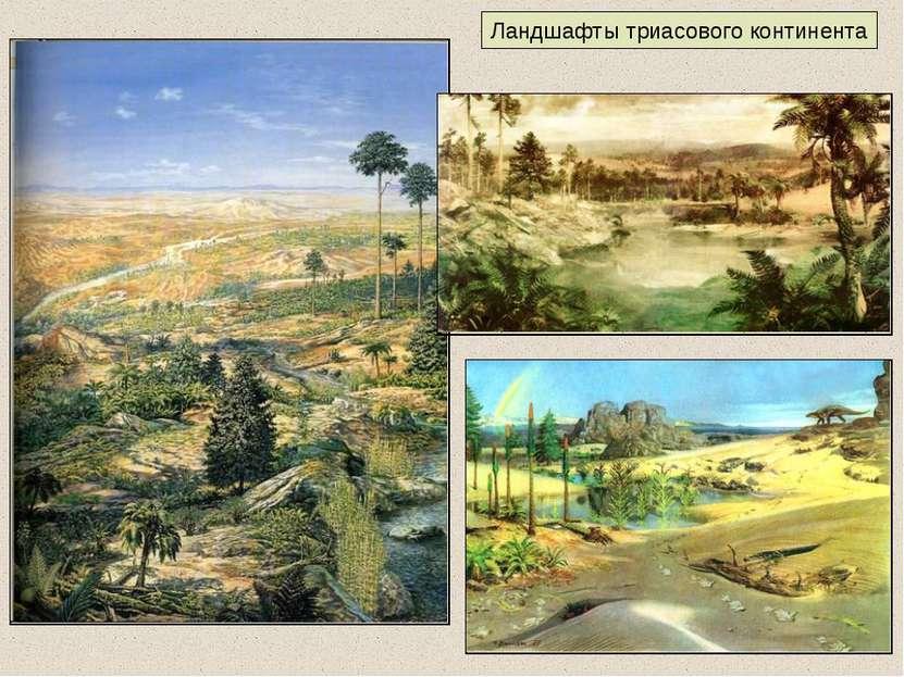 Ландшафты триасового континента