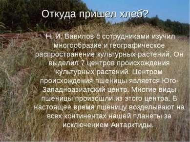Откуда пришел хлеб? Н. И. Вавилов с сотрудниками изучил многообразие и геогра...