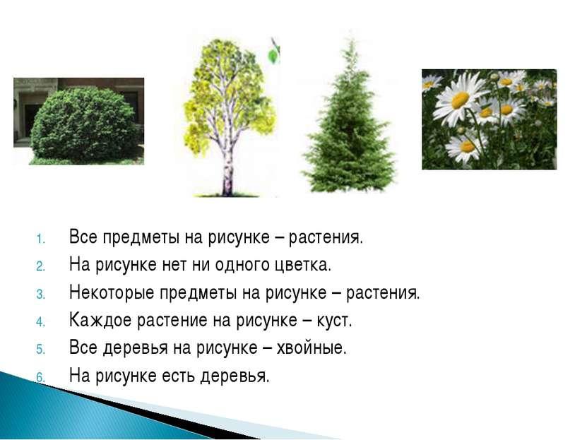 Все предметы на рисунке – растения. На рисунке нет ни одного цветка. Некоторы...
