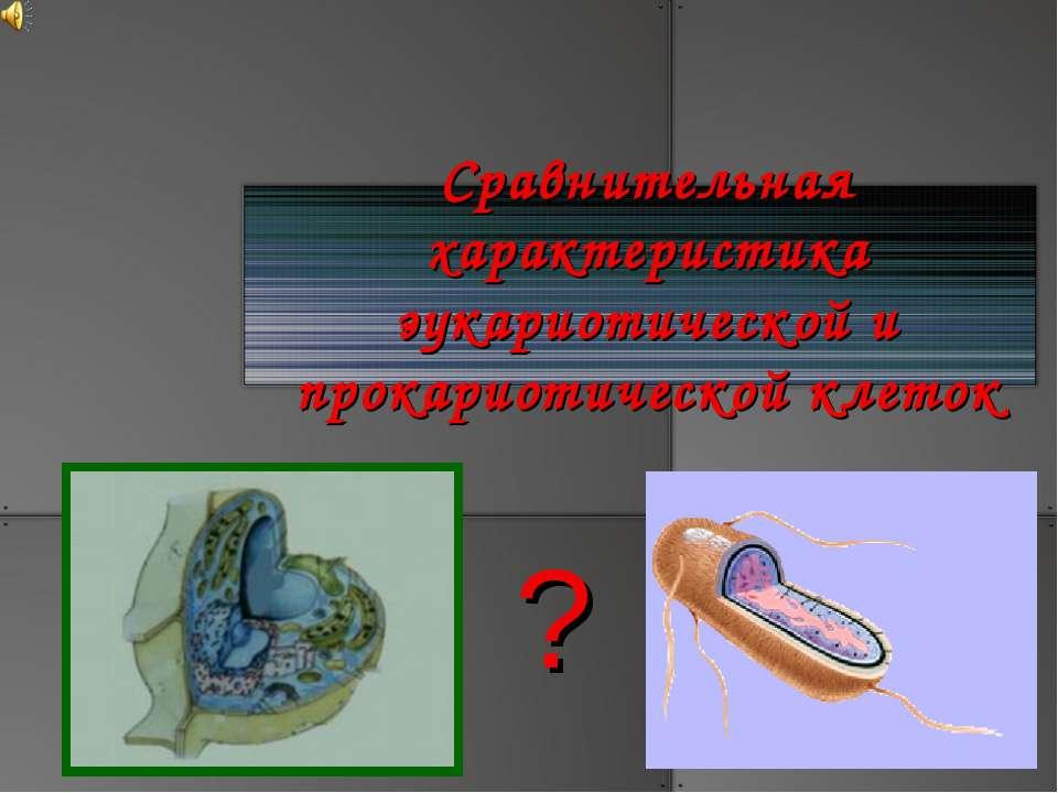 Сравнительная характеристика эукариотической и прокариотической клеток ?
