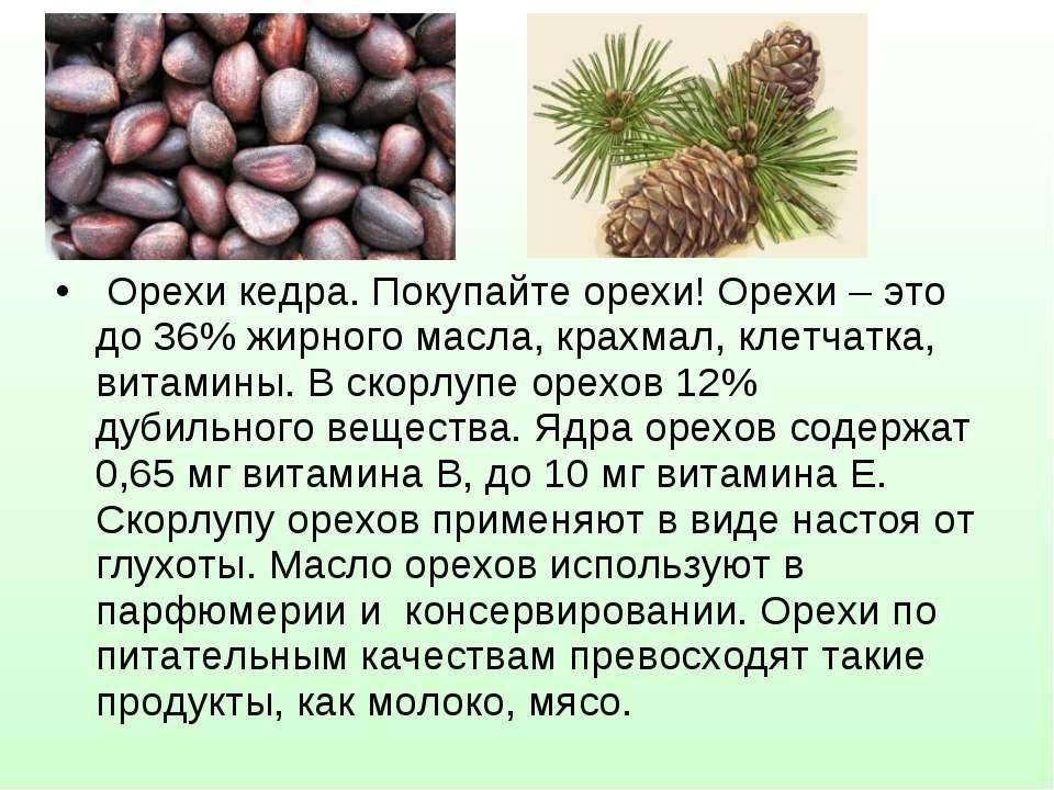 Орехи кедра. Покупайте орехи! Орехи – это до 36% жирного масла, крахмал, клет...