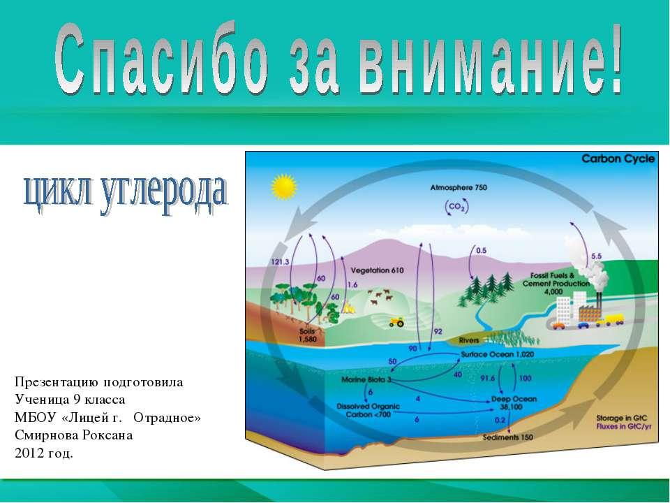 Презентацию подготовила Ученица 9 класса МБОУ «Лицей г. Отрадное» Смирнова Ро...