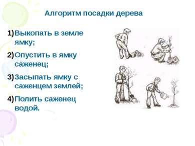 Алгоритм посадки дерева Выкопать в земле ямку; Опустить в ямку саженец; Засып...
