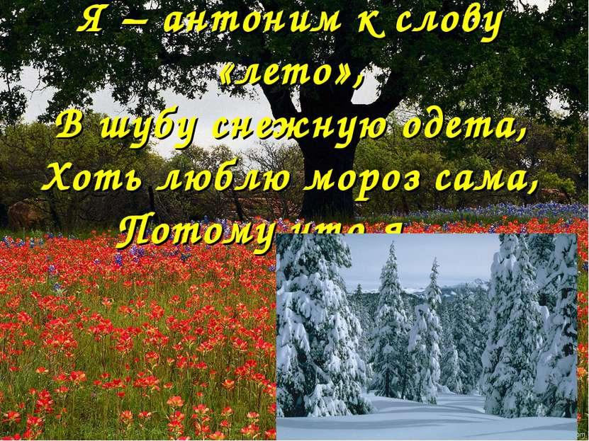 Я – антоним к слову «лето», В шубу снежную одета, Хоть люблю мороз сама, Пото...