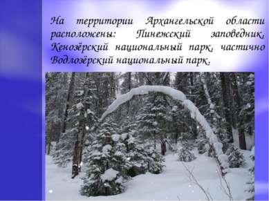 На территории Архангельской области расположены: Пинежский заповедник, Кенозё...