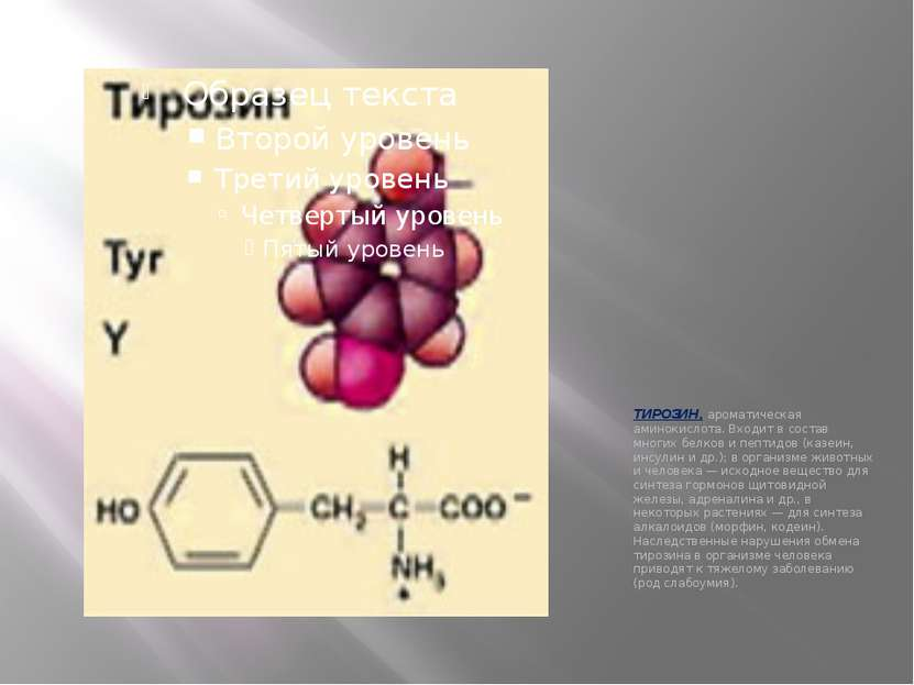 ТИРОЗИН, ароматическая аминокислота. Входит в состав многих белков и пептидов...