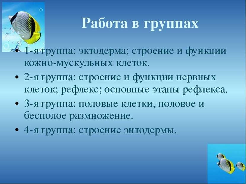Работа в группах 1-я группа: эктодерма; строение и функции кожно-мускульных к...