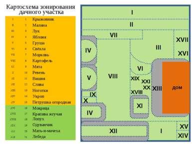 Картосхема зонирования дачного участка дом I 1 Крыжовник II 2 Малина III 3 Лу...