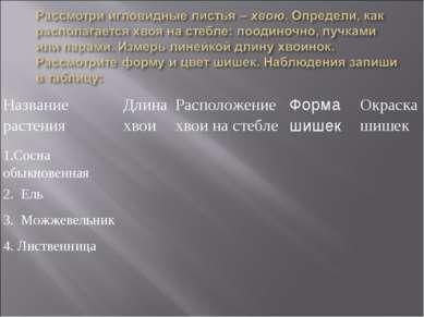 Название растения Длина хвои Расположение хвои на стебле Форма шишек Окраска ...