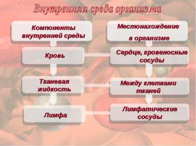 Местонахождение в организме Компоненты внутренней среды Кровь Тканевая жидкос...