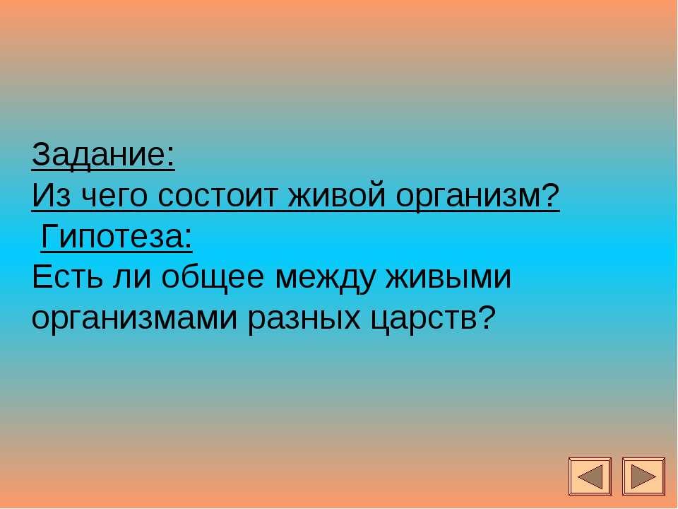Задание: Из чего состоит живой организм? Гипотеза: Есть ли общее между живыми...