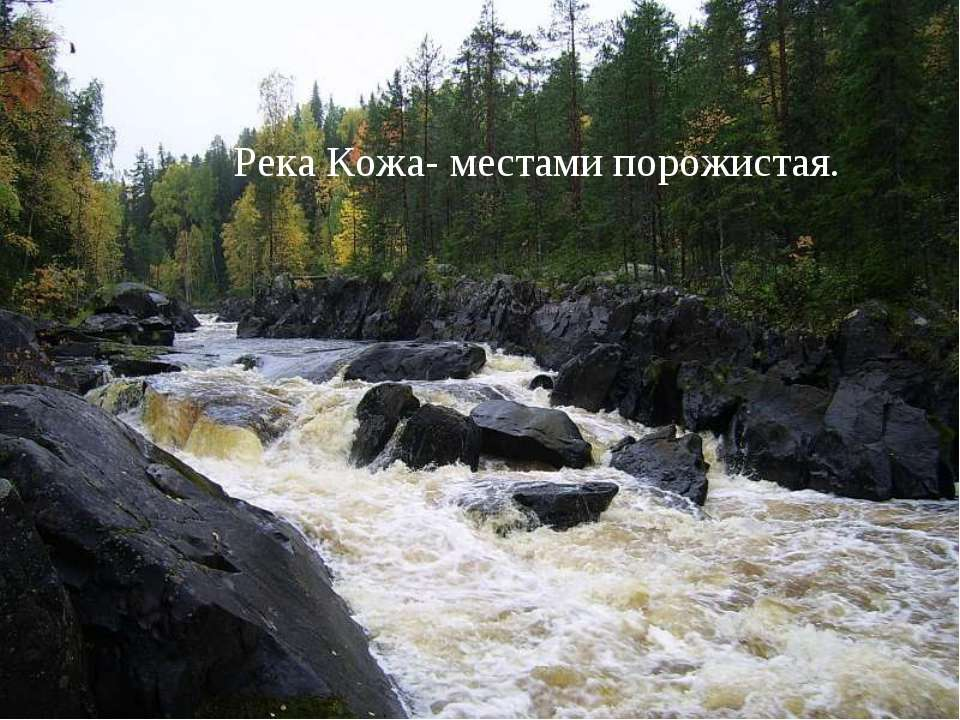 Река Кожа- местами порожистая.