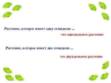 Растение, которое имеет одну семядолю ... это однодольное растение Растение, ...