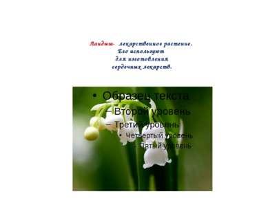 Ландыш- лекарственное растение. Его используют для изготовления сердечных лек...