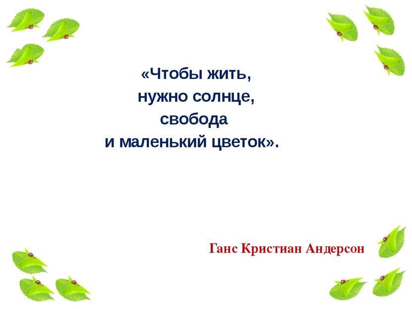 «Чтобы жить, нужно солнце, свобода и маленький цветок». Ганс Кристиан Андерсон