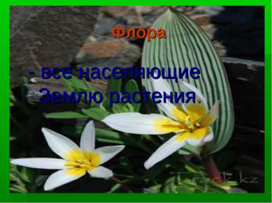 Флора - все населяющие Землю растения.