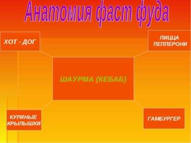 ШАУРМА (КЕБАБ) ПИЦЦА ПЕППЕРОНИ ХОТ - ДОГ ГАМБУРГЕР КУРИНЫЕ КРЫЛЫШКИ