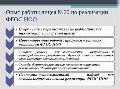 Опыт работы лицея №20 по реализации ФГОС НОО
