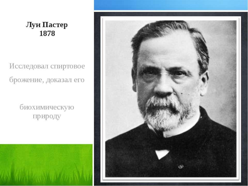 Луи Пастер 1878 Исследовал спиртовое брожение, доказал его биохимическую природу
