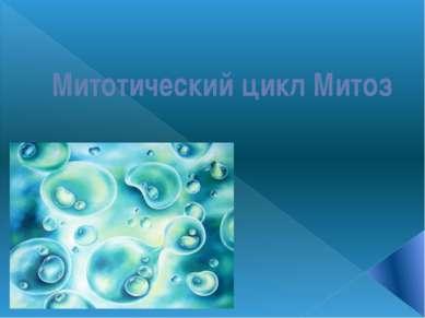 Митотический цикл Митоз