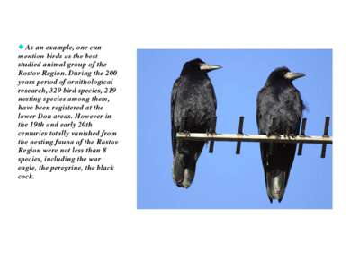 As an example, one can mention birds as the best studied animal group of the ...