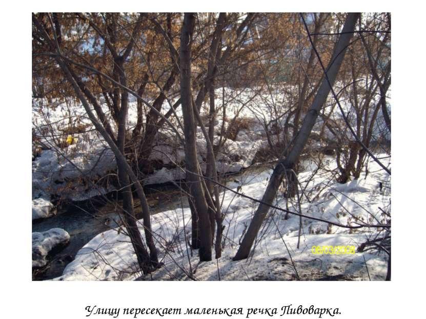 Улицу пересекает маленькая речка Пивоварка.