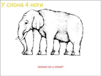 У слона 4 ноги