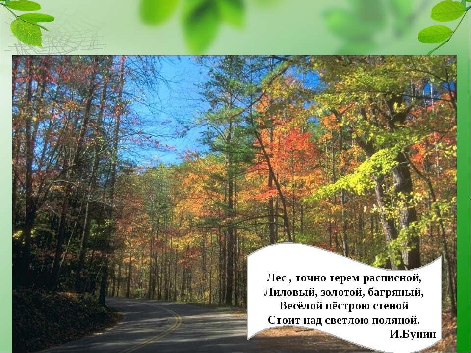 Лес , точно терем расписной, Лиловый, золотой, багряный, Весёлой пёстрою стен...