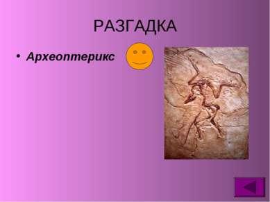 РАЗГАДКА Археоптерикс