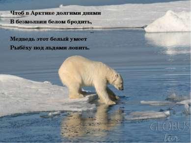 Чтоб в Арктике долгими днями В безмолвии белом бродить, Медведь этот белый ум...
