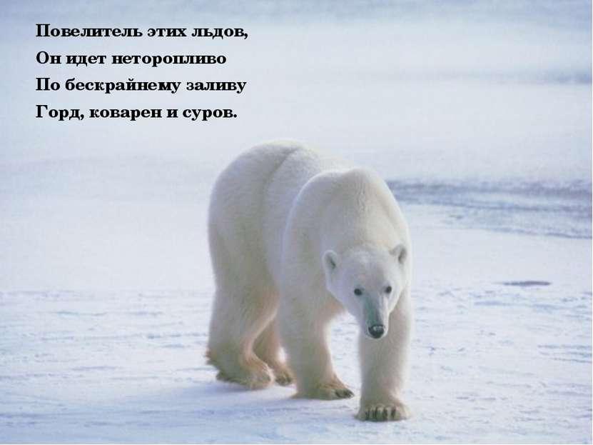 Повелитель этих льдов, Он идет неторопливо По бескрайнему заливу Горд, коваре...