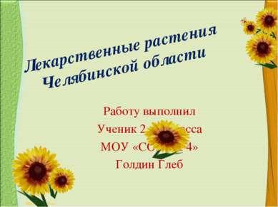 Лекарственные растения Челябинской области Работу выполнил Ученик 2 – б класс...