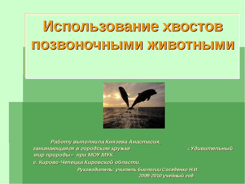 Использование хвостов позвоночными животными Работу выполнила Князева Анастас...