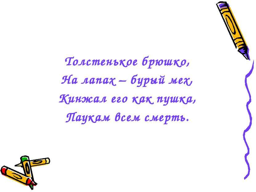 Толстенькое брюшко, На лапах – бурый мех, Кинжал его как пушка, Паукам всем с...