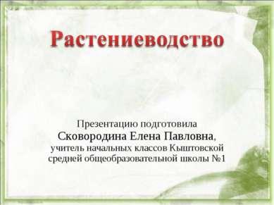 Презентацию подготовила Сковородина Елена Павловна, учитель начальных классов...