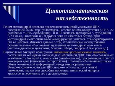 Цитоплазматическая наследственность Геном митохондрий человека представлен ко...