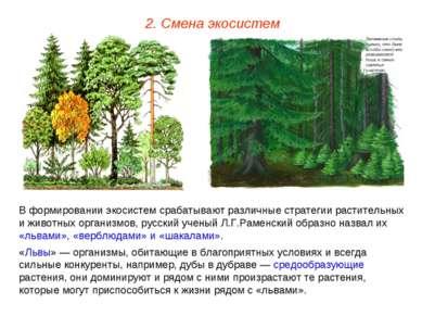 2. Смена экосистем В формировании экосистем срабатывают различные стратегии р...