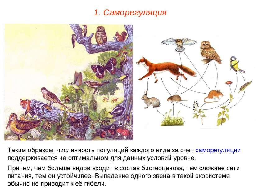 1. Саморегуляция Таким образом, численность популяций каждого вида за счет са...