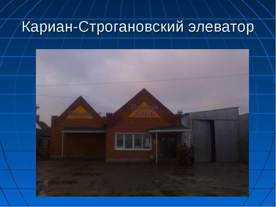 Кариан-Строгановский элеватор