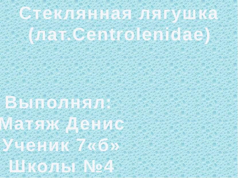 Стеклянная лягушка (лат.Centrolenidae) Выполнял: Матяж Денис Ученик 7«б» Школ...