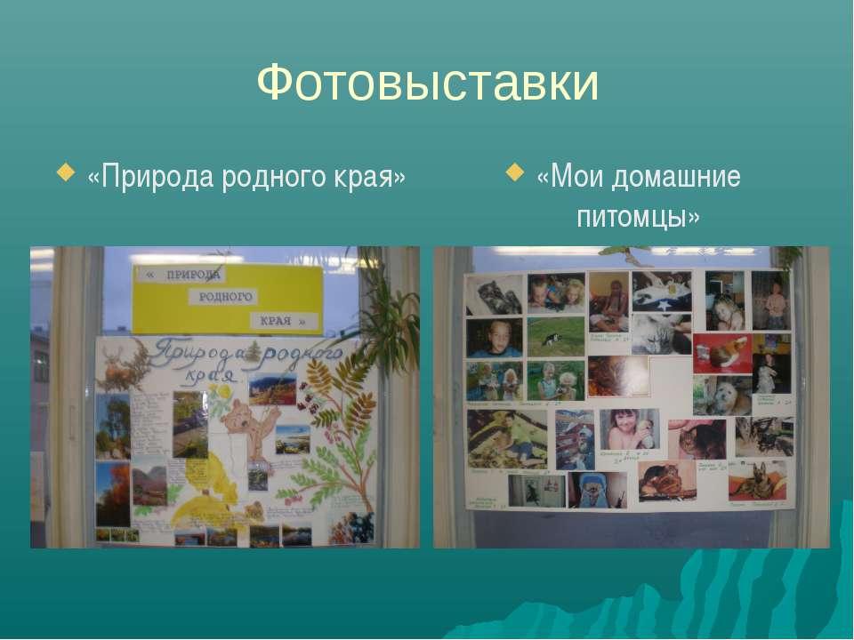 Фотовыставки «Природа родного края» «Мои домашние питомцы»