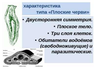 Общая характеристика типа «Плоские черви» Двусторонняя симметрия. Плоское тел...