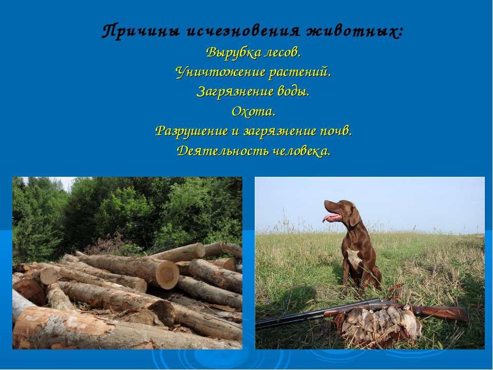 Причины исчезновения животных: Вырубка лесов. Уничтожение растений. Загрязнен...