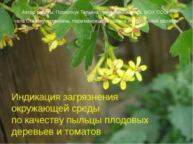 * Индикация загрязнения окружающей среды по качеству пыльцы плодовых деревьев...