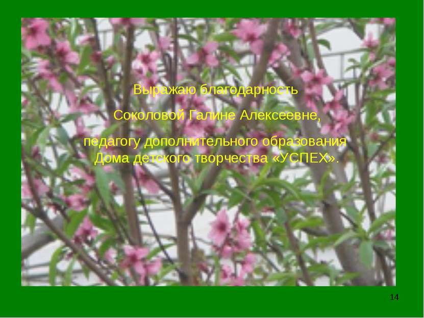 * Выражаю благодарность Соколовой Галине Алексеевне, педагогу дополнительного...