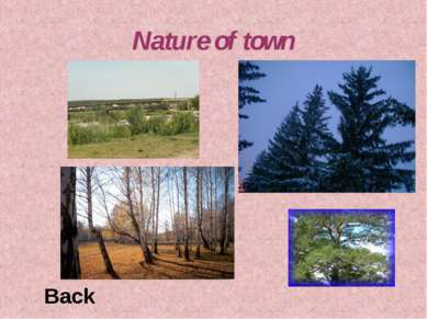 Nature of town Back