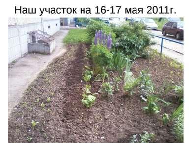 Наш участок на 16-17 мая 2011г.